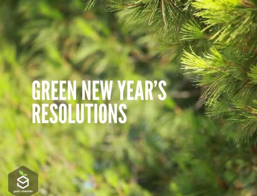 Green New Year's Resolutions قرارات خضراء للسنة الجديدة